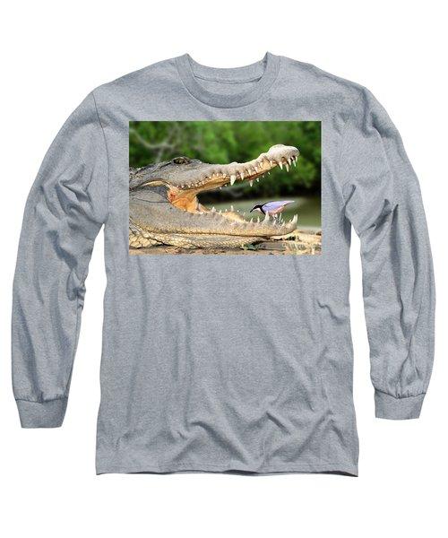 The Crocodile Bird Long Sleeve T-Shirt