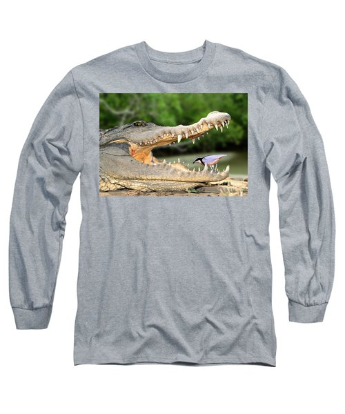 The Crocodile Bird Long Sleeve T-Shirt