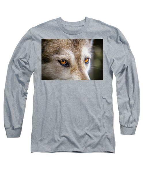 Long Sleeve T-Shirt featuring the photograph The Eyes Of A Great Grey Wolf by Teri Virbickis