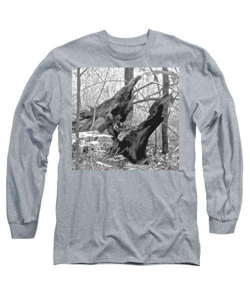 The Fallen - Dragon Skull Long Sleeve T-Shirt