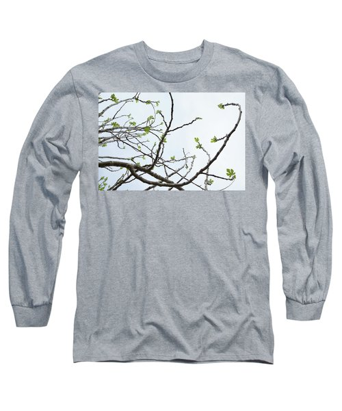 The Fig Tree Budding Long Sleeve T-Shirt