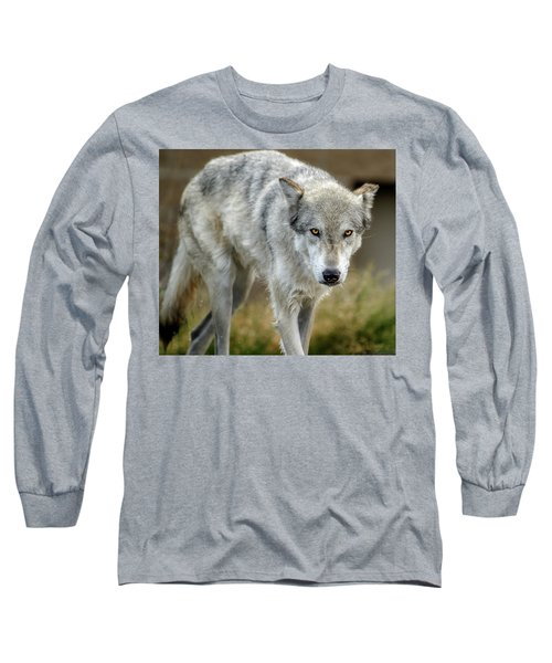 The Grey Wolf Shake Long Sleeve T-Shirt