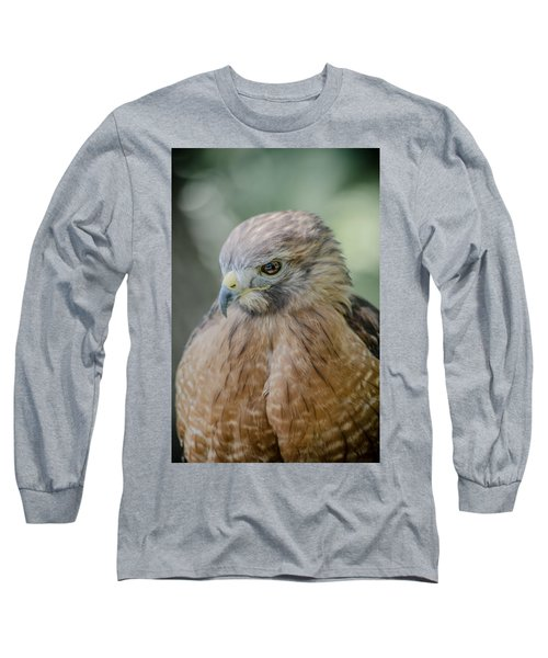 The Hawk Long Sleeve T-Shirt by David Collins
