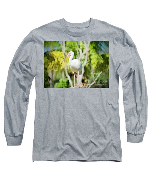 The Ibis Pose Long Sleeve T-Shirt