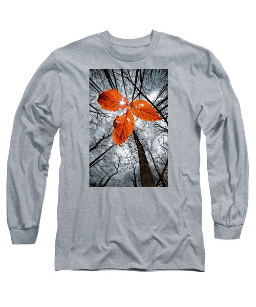 The Last Leaf Of November Long Sleeve T-Shirt by Robert Charity