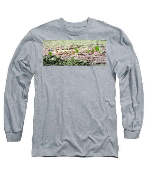 The Leaf Parade  Long Sleeve T-Shirt