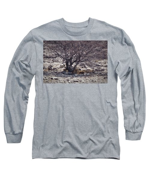 Long Sleeve T-Shirt featuring the photograph The Lion Family by Ernie Echols
