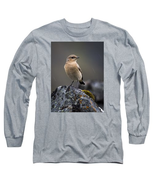 The Migrant Long Sleeve T-Shirt