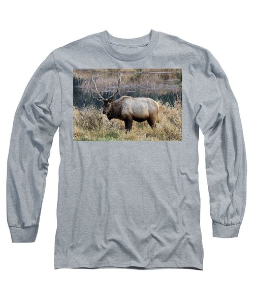 The Old Bull Long Sleeve T-Shirt