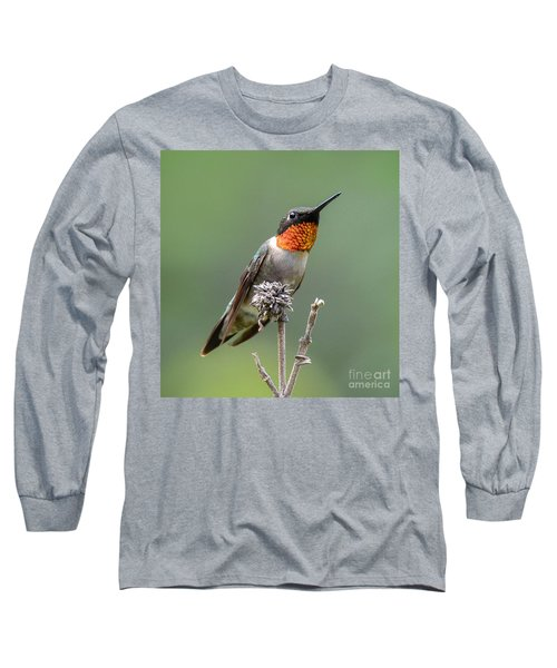 The Perfect Lookout Long Sleeve T-Shirt
