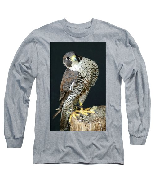 The Proud Falcon Long Sleeve T-Shirt