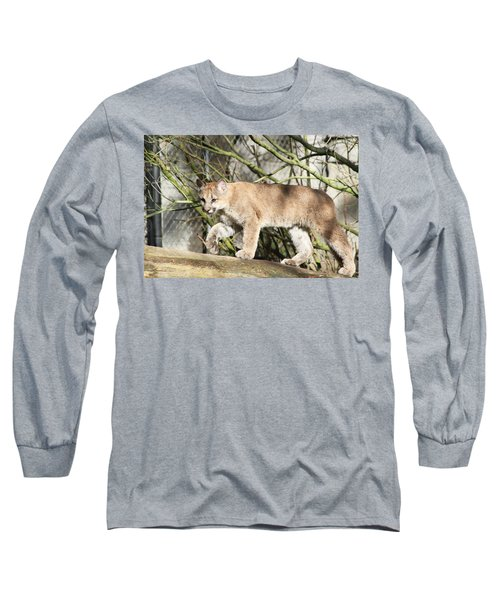 Long Sleeve T-Shirt featuring the photograph The Red Carpet by Laddie Halupa