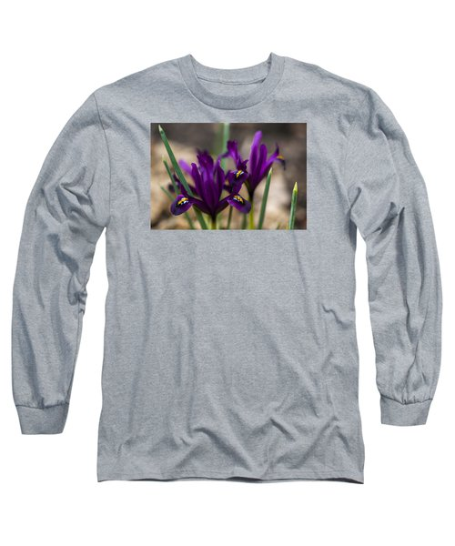The Rise Of The Early Royal Dwarf Iris Long Sleeve T-Shirt by Dan Hefle