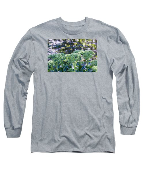 The Sedum Forest Long Sleeve T-Shirt