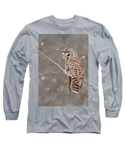 The Silent Hunter Long Sleeve T-Shirt by Mircea Costina Photography