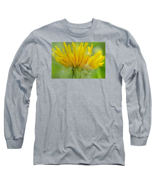 The Sow And Silk Long Sleeve T-Shirt by Janet Rockburn