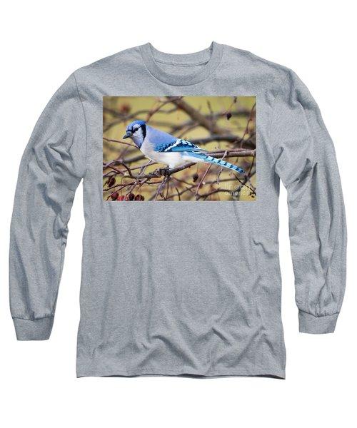 The Winter Blue Jay  Long Sleeve T-Shirt by Ricky L Jones