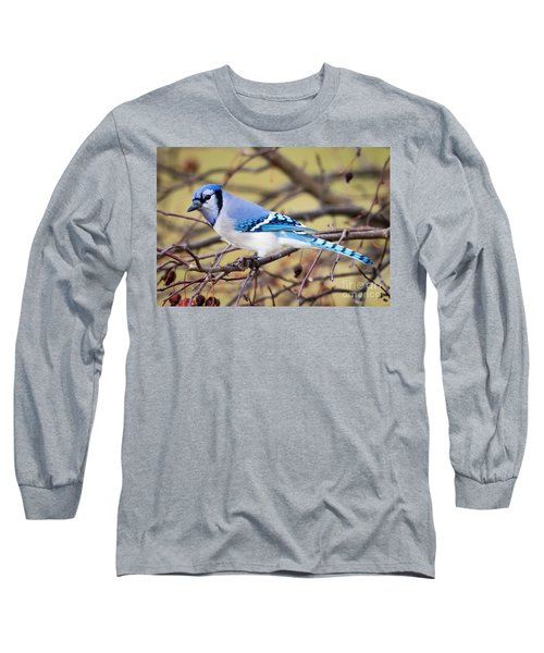 The Winter Blue Jay  Long Sleeve T-Shirt