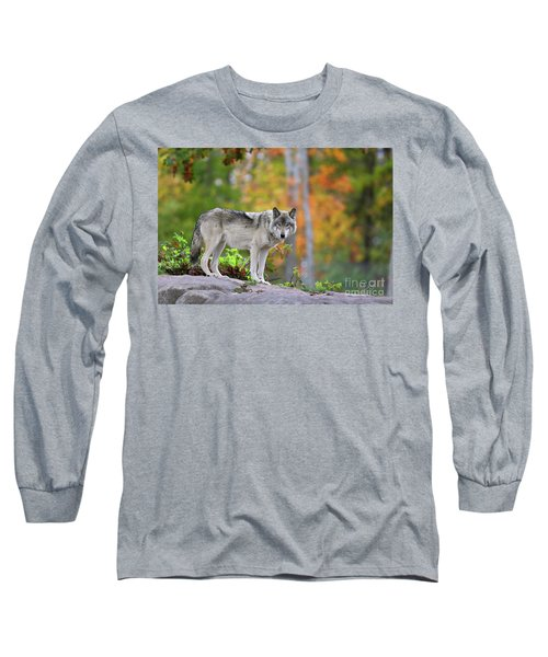 The Wolf. Long Sleeve T-Shirt