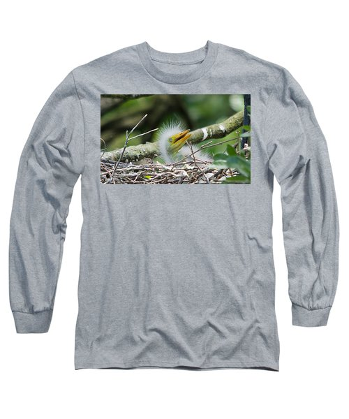The World Is Full Of Surprises Long Sleeve T-Shirt by Kenneth Albin