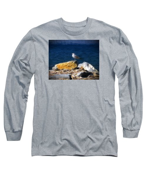 Long Sleeve T-Shirt featuring the photograph This Gull Has Flown by John Freidenberg
