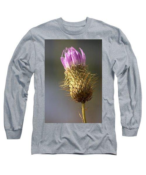 Thistle Long Sleeve T-Shirt by Joseph Skompski