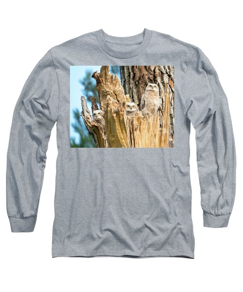 Three Great Horned Owl Babies Long Sleeve T-Shirt