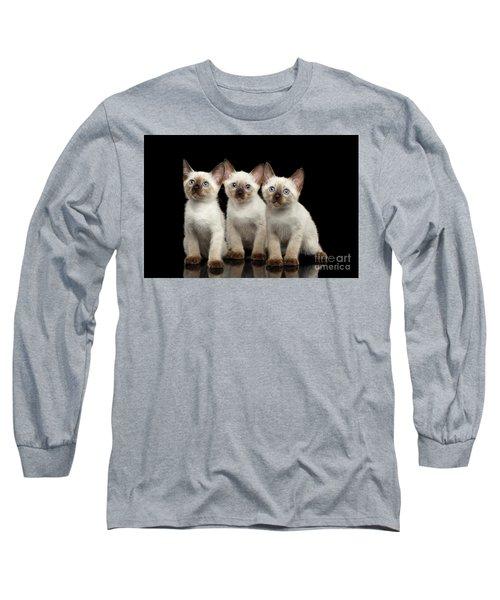 Three Kitty Of Breed Mekong Bobtail On Black Background Long Sleeve T-Shirt by Sergey Taran