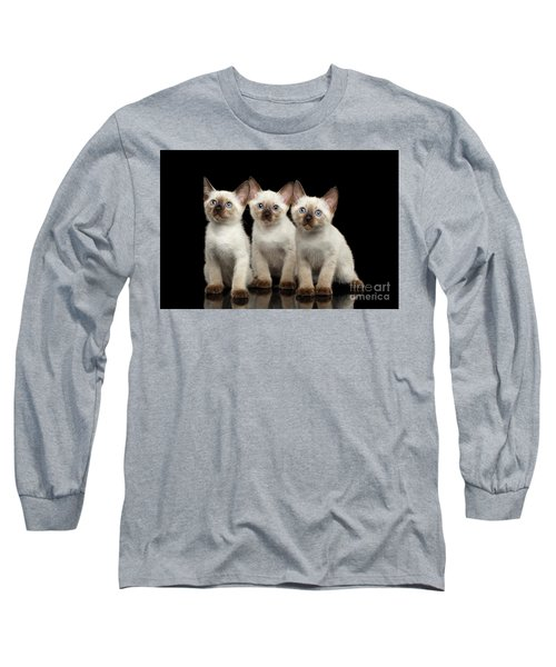 Three Kitty Of Breed Mekong Bobtail On Black Background Long Sleeve T-Shirt
