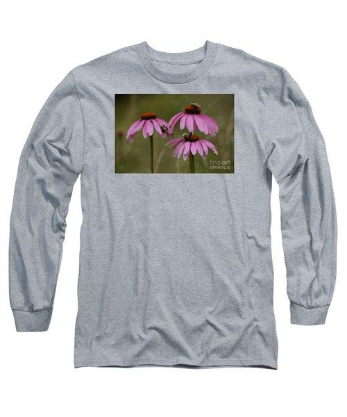 Three Long Sleeve T-Shirt by Randy Bodkins