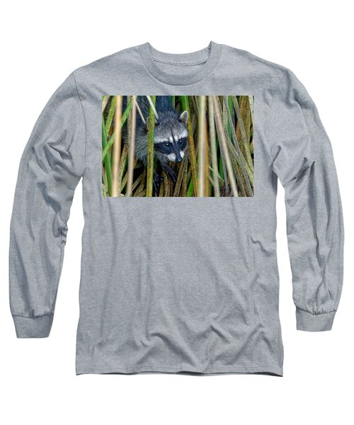 Through The Reeds - Raccoon Long Sleeve T-Shirt