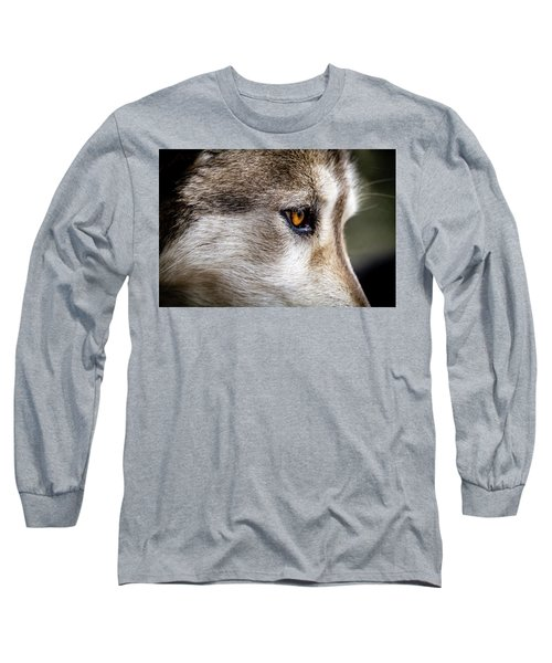 Long Sleeve T-Shirt featuring the photograph Timber Wolf Stare by Teri Virbickis