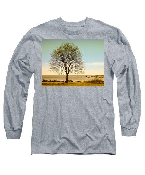 Tree At New Castle Common Long Sleeve T-Shirt by Nancy De Flon