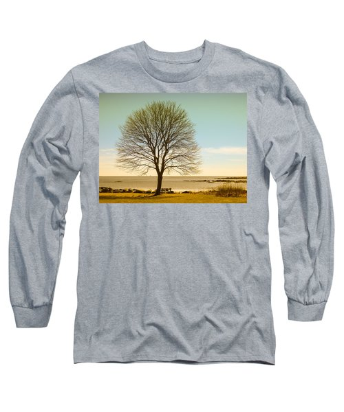 Tree At New Castle Common Long Sleeve T-Shirt