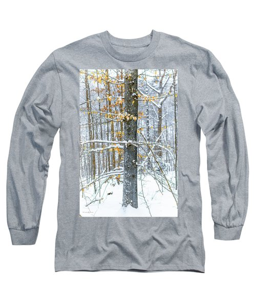 Trees In Snow Long Sleeve T-Shirt