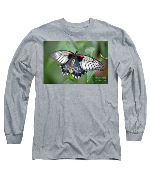 Tropical Butterfly Long Sleeve T-Shirt