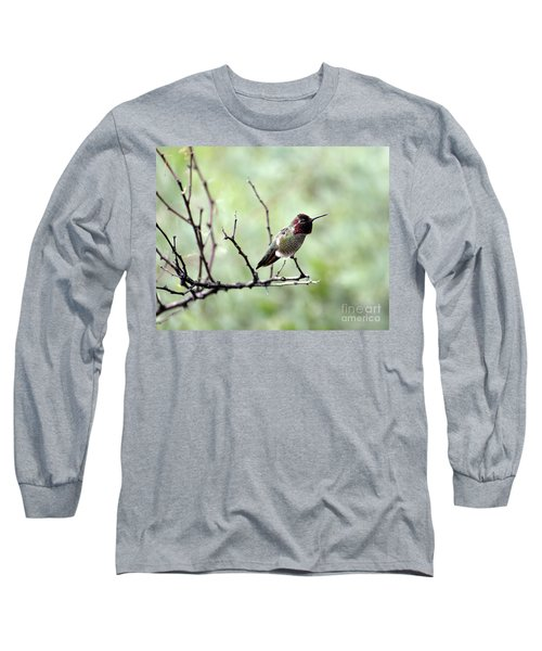 Trumpeting Hummingbird Long Sleeve T-Shirt