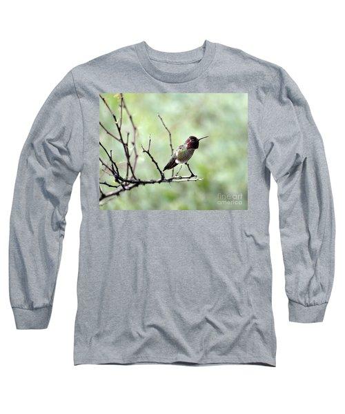 Trumpeting Hummingbird Long Sleeve T-Shirt