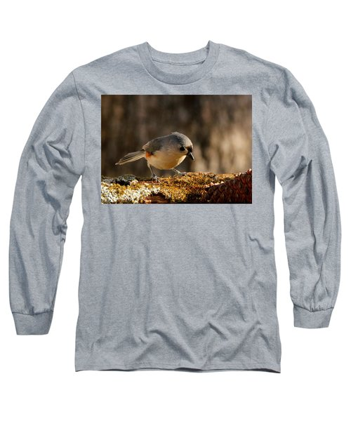 Tufted Titmouse In Fall Long Sleeve T-Shirt by Sheila Brown