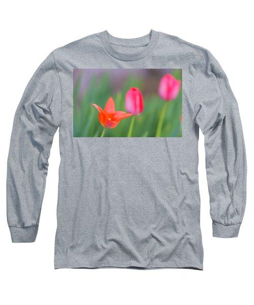 Tulips In My Garden Long Sleeve T-Shirt by Rainer Kersten