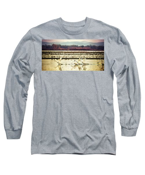 Tundra Swans Lift Off Long Sleeve T-Shirt