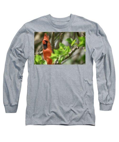Tweeting Long Sleeve T-Shirt