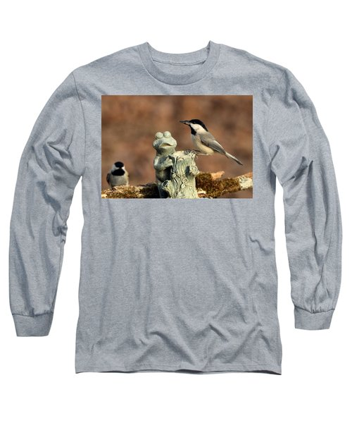 Two Black-capped Chickadees And Frog Long Sleeve T-Shirt by Sheila Brown