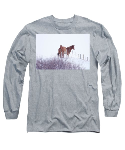 Two Horses In The Snow Long Sleeve T-Shirt