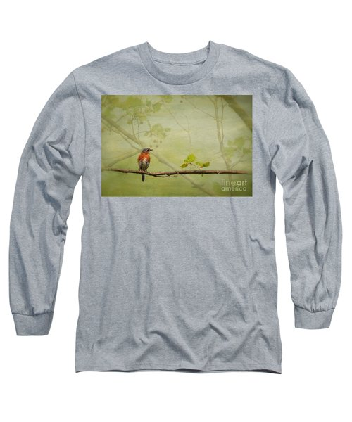Until Spring Long Sleeve T-Shirt by Lois Bryan