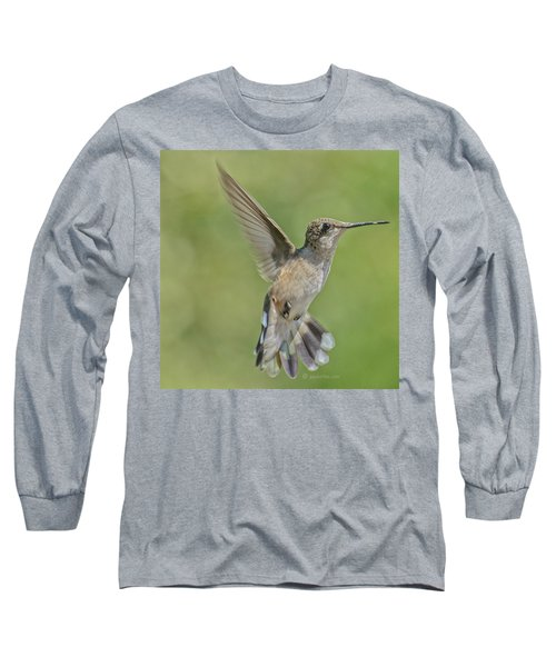 Untitled Hum_bird_four Long Sleeve T-Shirt