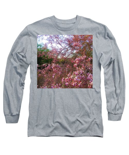 Vekol Wash Desert Ironwood In Bloom Long Sleeve T-Shirt