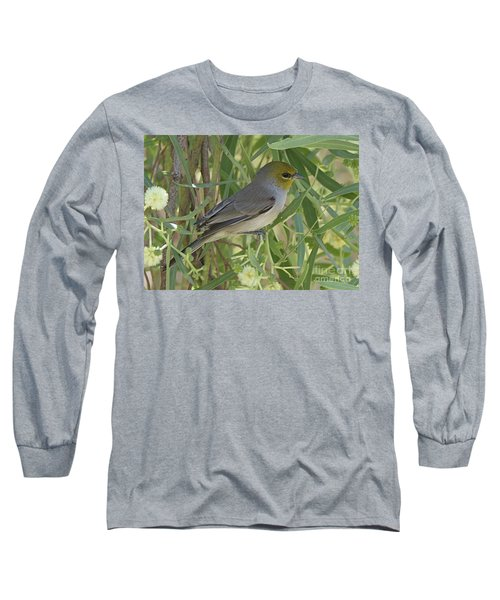 Verdin In Tree Long Sleeve T-Shirt by Anne Rodkin