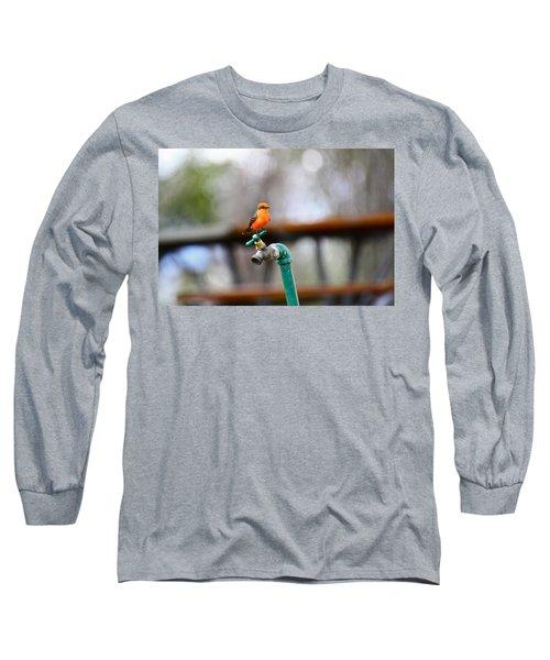 Vermilion Flycatcher Two Long Sleeve T-Shirt