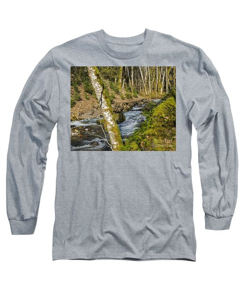 Views Of A Stream, I Long Sleeve T-Shirt by Chuck Flewelling